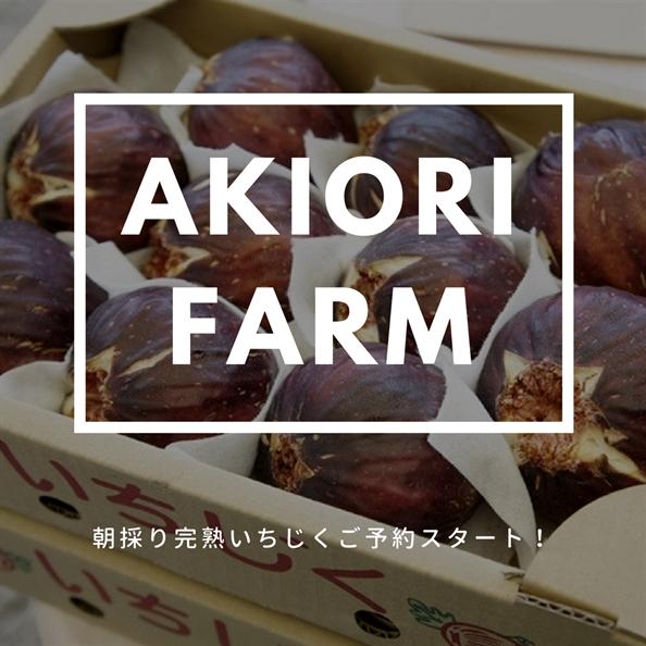 AkiOri_akiori_akiori.com_あきおり_アキオリ_いちじく_イチジク_あすかてくるで_羽曳野